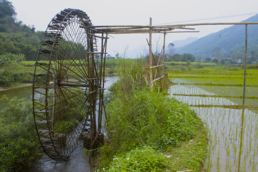 A water wheel feeding an elevated rice field in Vietnam