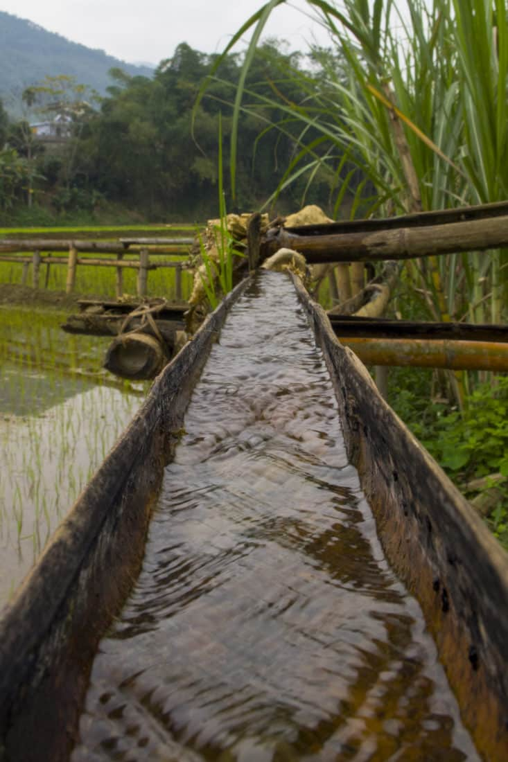 Bamboo used as an aquaduct with water flowing through it in Vietnam