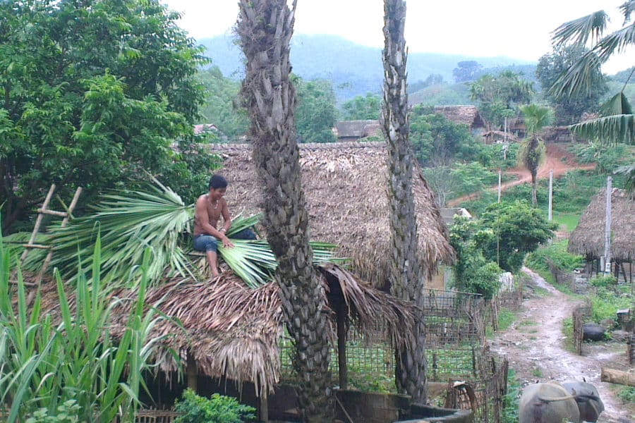 Roof thatching with palm leaves