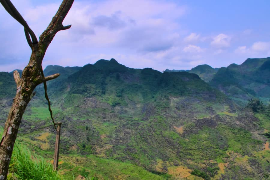 A branch holding up a powerline in the mountains of Meo Vac, Ha Giang