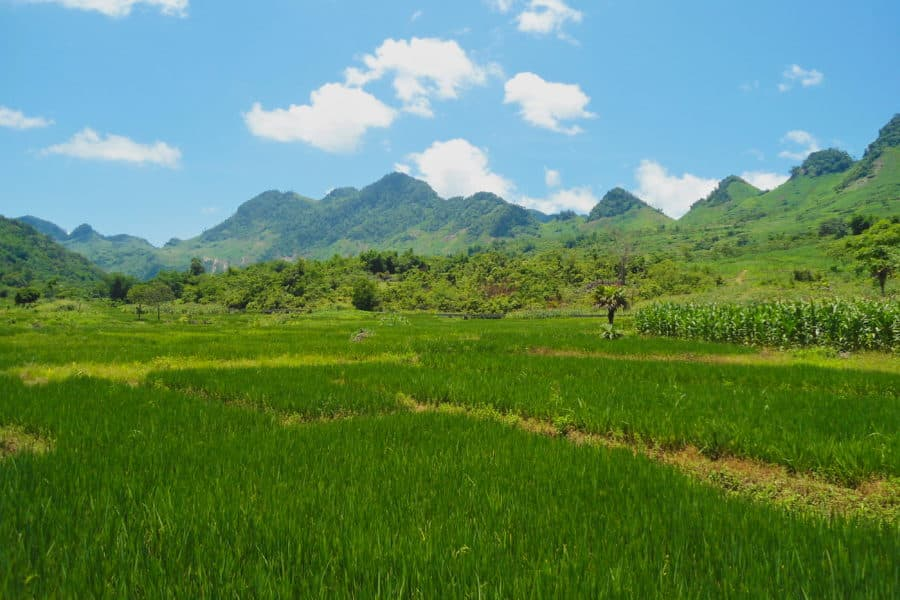 On the way to Phu Yen on a Vietnam motorbike tour