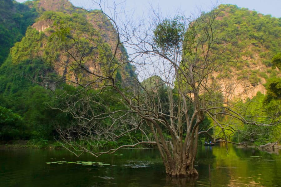 Tràng An – Boat tours caves and temples