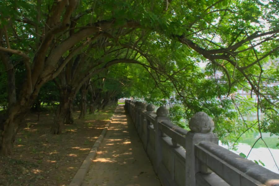 Trees overhanging a small lake walkway at Bai Dinh