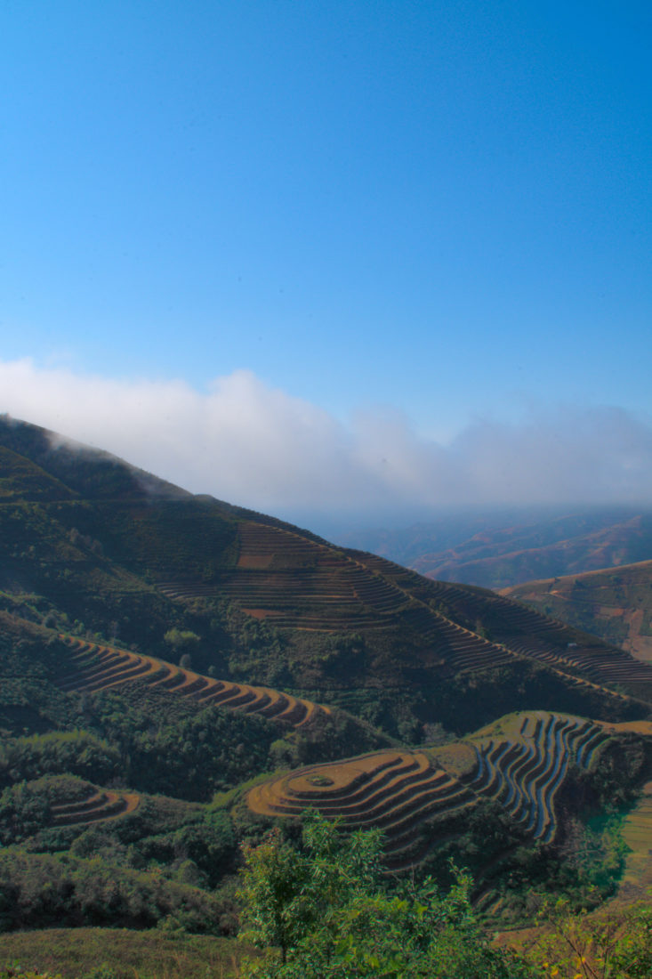 Rice terraces in the mountains of Xim Vang, Son La, Vietnam, as seen on a motorbike tour