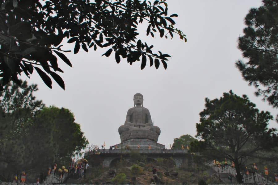 Giant buddha view from within the trees in Vietnam