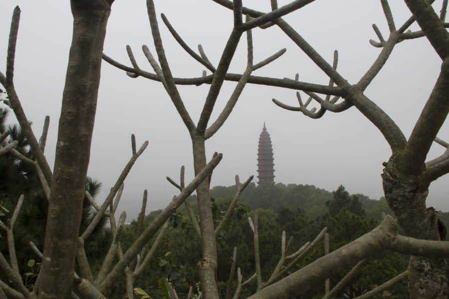 A budhhist stupa through frangipani trees