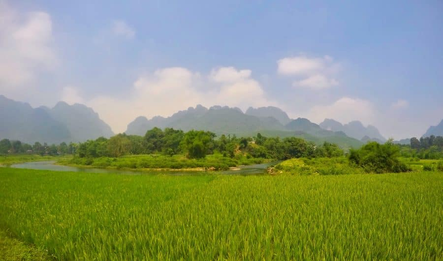 rice fields with karst mountains in the distance at Hoa Binh Province